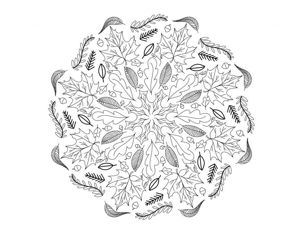 desenho de mandalas 2