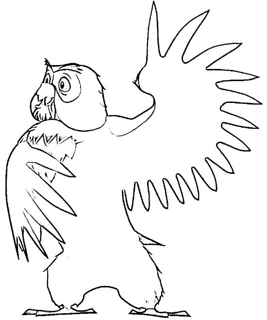 desenho de coruja para colorir 17